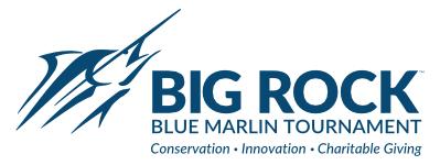 big-rock-logo@2x